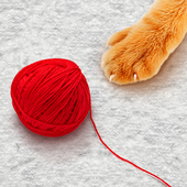Threads for cat toy icon