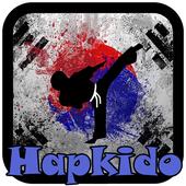 Hapkido Videos - Offline icon