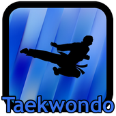 Taekwondo Kicks Videos - Offline icon