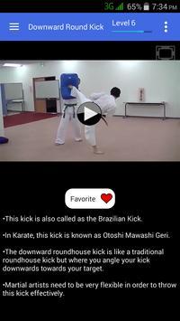 Taekwondo Kicks Videos - Offline screenshot 1