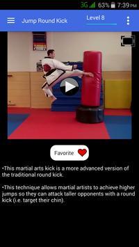 Taekwondo Kicks Videos - Offline screenshot 2