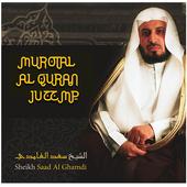Syaikh Saad Al Ghomidi Murattal アイコン