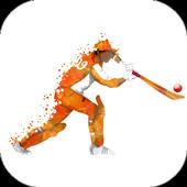 IPL T20 Cricket Schedule 2017 icon