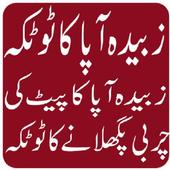 Zubaida Apa k Totkay in urdu icon
