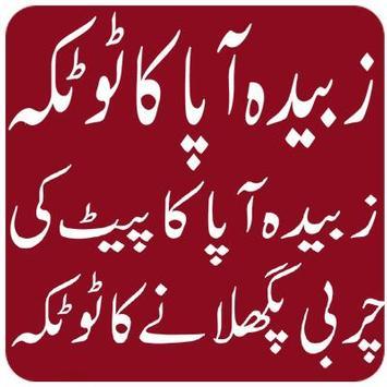 Zubaida Apa k Totkay in urdu screenshot 1