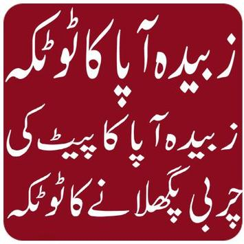 Zubaida Apa k Totkay in urdu screenshot 2