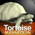 Tortoise Mannequin