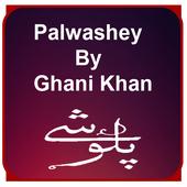 Palwashey icon