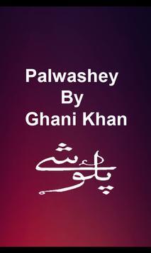 Palwashey poster