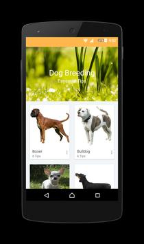 How to Breed a Dog poster