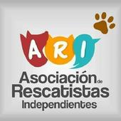 ARI Honduras icon