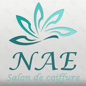 NAE Paris icon