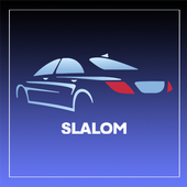 Slalom Transport de personnes icon