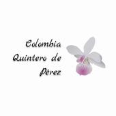 Colombia Quintero icon