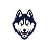 Dog Bed Shop UK icon