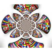 IOMUSEU icon