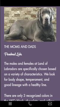 Land of Labradors apk screenshot