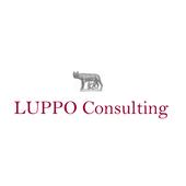 LUPPO Consulting icon