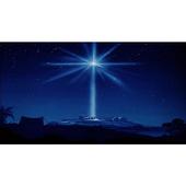 NRTH STAR icon