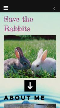 rejected rabbit rescue poster