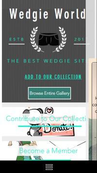 Wedgie World poster