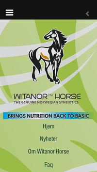 Witanor Horse poster