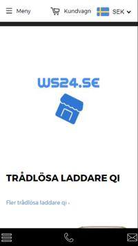 WS24 poster