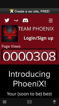 Team PhoeniX eSports poster