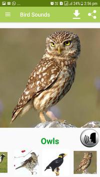Bird Sound & Pictures screenshot 10