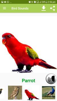 Bird Sound & Pictures screenshot 19