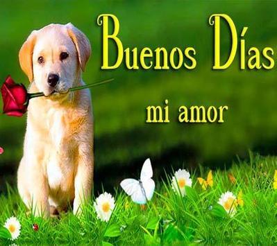 Buenos dias Amor poster