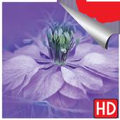 Bakgrunnsbilder blomster hd 2018 til telefon icon