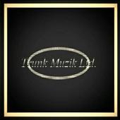 Trunk Muzik Ltd. icon