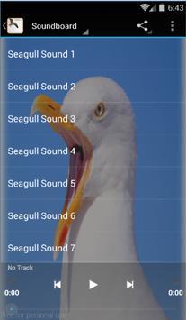 Seagull Bird Sounds poster