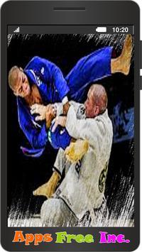 Jiu Jitsu poster