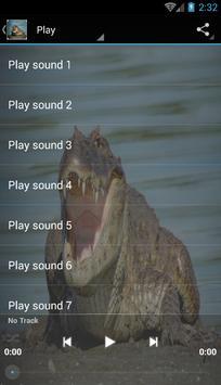 Crocodile sounds poster