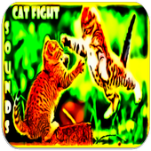 Cat fight Sounds icon