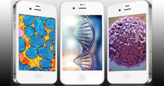تعلم علم الأحياء apk تصوير الشاشة