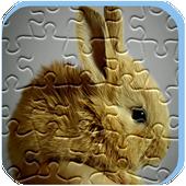 Rabbit Puzzle Game Free icon