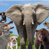 Animales Sonidos y Fondos icon