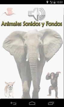 Animales Sonidos y Fondos screenshot 7