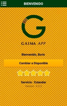Team Gaima poster