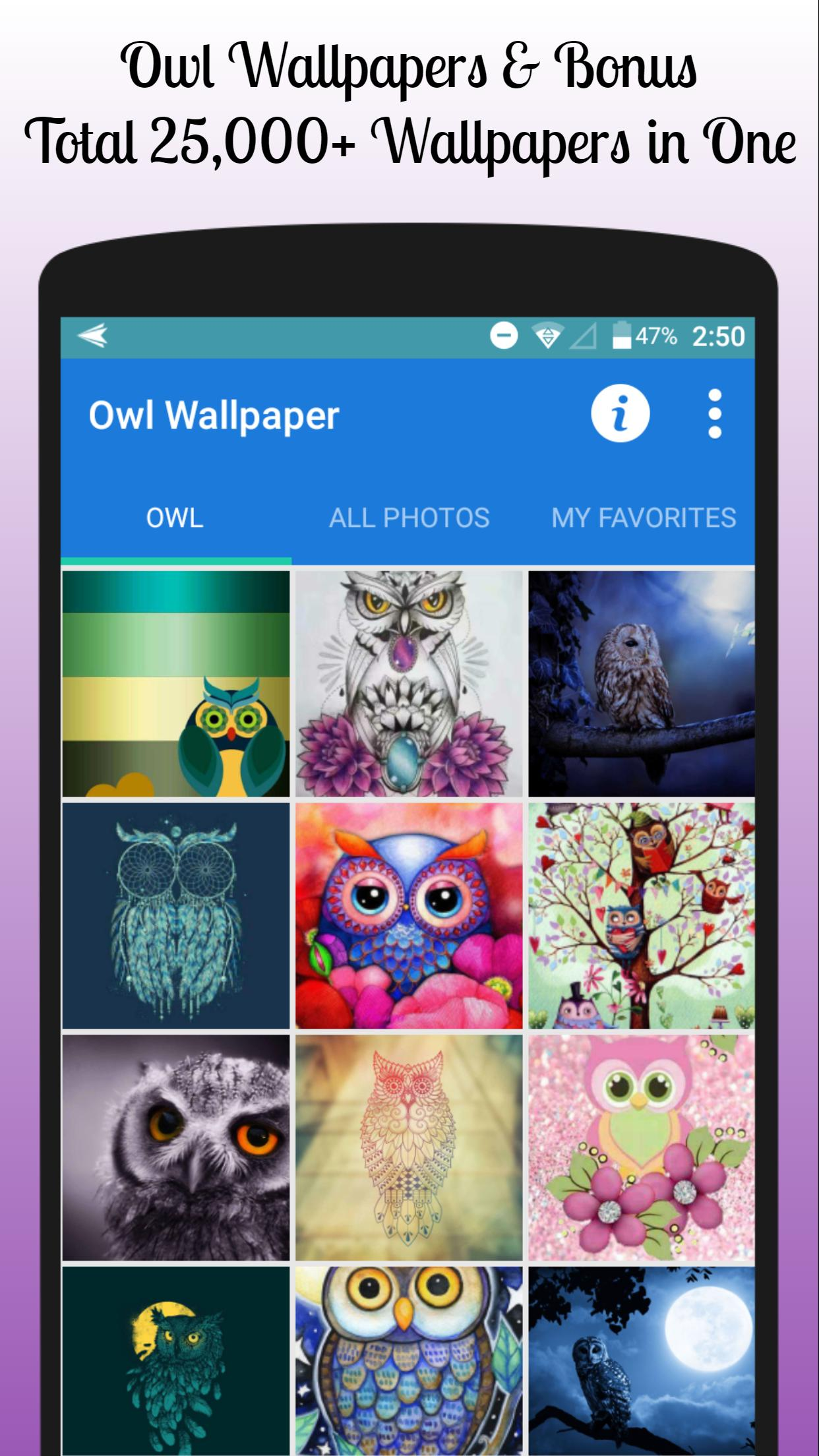 Owl Wallpaper Free For Android Apk Download