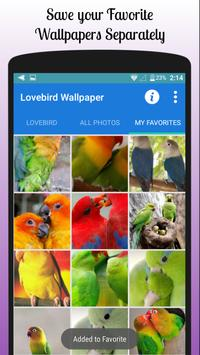 Lovebird Wallpaper Free screenshot 2