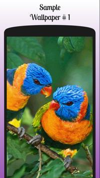 Lovebird Wallpaper Free screenshot 3