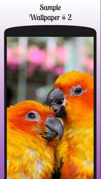 Lovebird Wallpaper Free screenshot 4