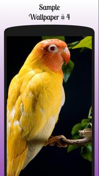 Lovebird Wallpaper Free screenshot 6