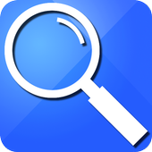 The WebSearch icon
