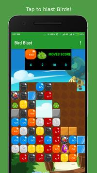 Bird Blast poster