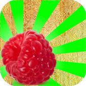 Fruits and Vegetables Blast icon